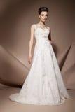 美丽的礼服婚礼妇女年轻人 库存照片
