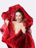 美丽的神秘的红色丝绸妇女年轻人 图库摄影