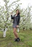 美丽的神仙的女孩在一个开花的李子庭院里 一个女孩的画象白花背景的 库存照片