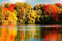 美丽的秋天公园用五颜六色的叶子、树和水 澳大利亚 免版税库存图片