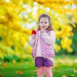 美丽的秋天公园的小孩女孩 免版税库存照片