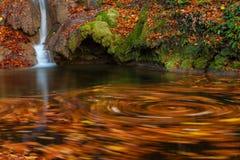 美丽的秋天叶子和山在森林里放出 库存照片
