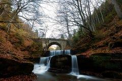 美丽的秋天瀑布在森林里 免版税库存照片