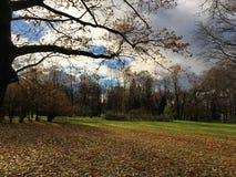 美丽的秋天照片在一个晴天 库存照片