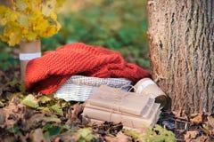 美丽的秋天照片 书堆积与串,老树桩,与软的格子花呢披肩的柳条筐 免版税库存照片