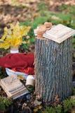 美丽的秋天照片 书堆积与串,老树桩,与软的格子花呢披肩的柳条筐 库存图片