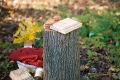 美丽的秋天照片 书堆积与串,老树桩,与软的格子花呢披肩的柳条筐 图库摄影