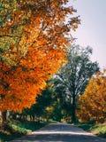 美丽的秋天照片 免版税库存图片