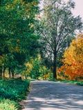 美丽的秋天照片 免版税库存照片
