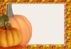 美丽的秋天背景卡片用在温暖的颜色的南瓜 免版税图库摄影