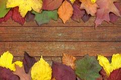 美丽的秋天装饰 库存照片