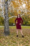 美丽的端庄的妇女在一个公园在秋天 T 免版税库存照片