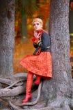 美丽的端庄的妇女在秋天森林里 库存照片