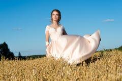 美丽的米黄礼服的迷人的女孩在领域黑麦 库存图片
