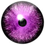 美丽的紫色3d万圣夜眼珠 向量例证