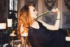 年轻美丽的红发女孩画象一个哥特式巫婆的图象的在万圣夜 库存图片
