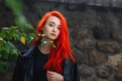 美丽的红头发人女孩画象在室外黑暗的墙壁上的 有站立在中的充满活力的五颜六色的发型的Unformal妇女 免版税库存图片