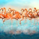 美丽的红色火鸟在沙漠 图库摄影