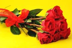 美丽的红色玫瑰 库存照片
