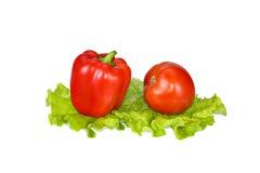美丽的红辣椒和蕃茄在莴苣叶子 免版税库存照片