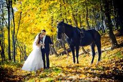 美丽的结婚照在秋天公园 新婚佳偶美好的华美的夫妇体贴拥抱,当时 免版税库存照片