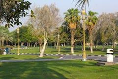 美丽的绿色庭院 概念查出的本质白色 图库摄影