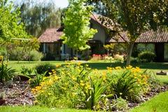 美丽的绿色庭院 库存照片