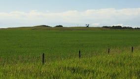 美丽的绿色提取油的草甸和遥远的pumpjack 影视素材