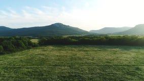 美丽的绿色草甸鸟瞰图有树、乡下公路和山的在背景中在反对蓝色的夏天 股票录像