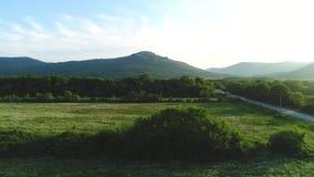 美丽的绿色草甸鸟瞰图有树、乡下公路和山的在背景中在反对蓝色的夏天 影视素材