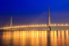 美丽的缆绳在晚上停留了桥梁在南京 库存照片