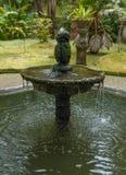 美丽的老喷泉在公园圣米格尔亚速尔群岛 库存照片