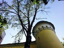 美丽的老大厦在米斯克 免版税库存照片