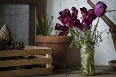 美丽的老葡萄酒英国乡下庭院装壶流洒了  图库摄影