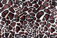 美丽的老虎毛皮-与橙色,米黄的五颜六色的纹理和b 免版税库存照片