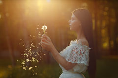 美丽的肉欲的深色的女孩画象白色礼服的吹 免版税库存图片