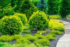 美丽的胡同在公园 庭院园艺的设计 库存图片