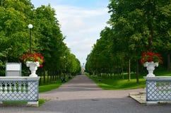 美丽的胡同在卡利柯治宫殿公园在塔林,爱沙尼亚 库存照片