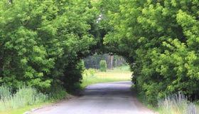 美丽的自然曲拱,相似与tunne 库存照片