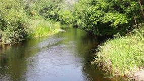 美丽的自然河 股票录像