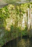 美丽的自然洞和地下湖,墨西哥 免版税库存照片