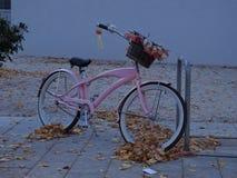 美丽的自行车在公园 免版税库存照片