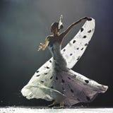 美丽的舞蹈演员伙计 免版税库存照片