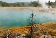 美丽的色的热量湖在黄石 免版税库存照片