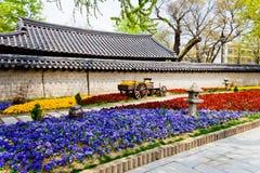 美丽的花前面韩文寺庙 免版税库存图片