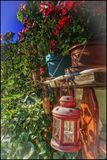 美丽的花和小灯笼 图库摄影