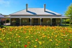 美丽的花园 库存照片