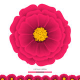 美丽的花大丽花 设计的要素 向量例证