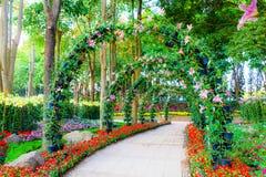 美丽的花成拱形与走道在园林植物庭院里 库存照片