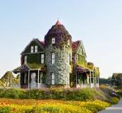 美丽的花房子 迪拜花园 迪拜旅游业 免版税库存图片